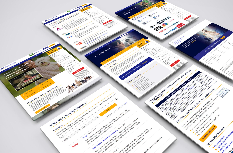 Online School Mobile Responsive Design